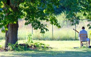 Musiker unter dem Baum