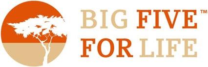 Big Five for Life Seminar & Consulting GmbH Logo